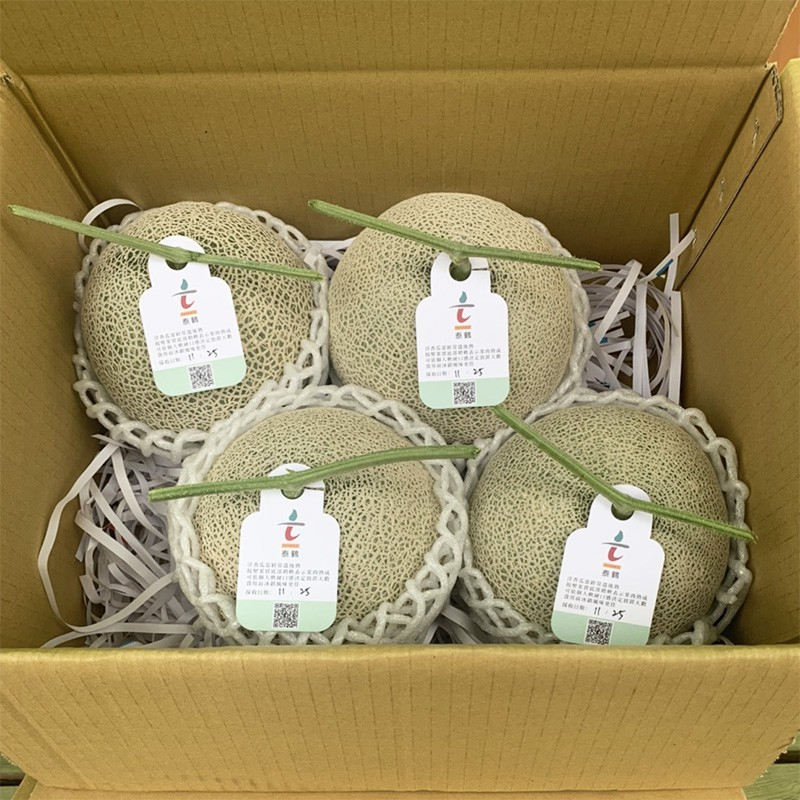 豐圓哈密瓜:紅櫻網紋洋香瓜(4顆禮盒裝)