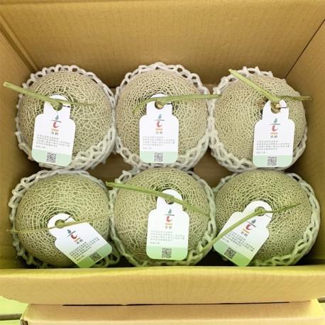 豐圓哈密瓜:紅櫻網紋洋香瓜(6顆箱裝)