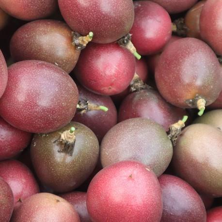 春光日和百香果:台農1號品種,屏東高樹產地直送