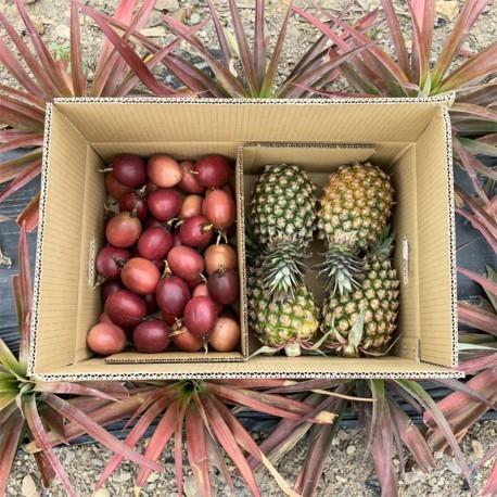 春日組合商品:百香果(5台斤)+春蜜鳳梨(4顆)