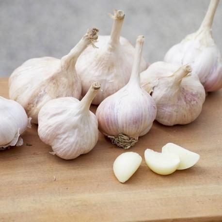 安心蒜:有產銷履歷認證的蒜頭(5台斤)