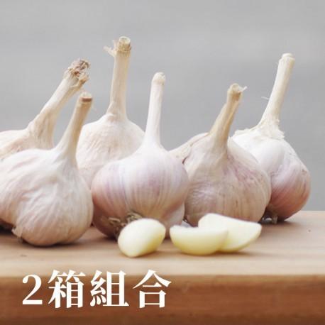 安心蒜:有產銷履歷認證的蒜頭(5台斤)-兩箱免運組