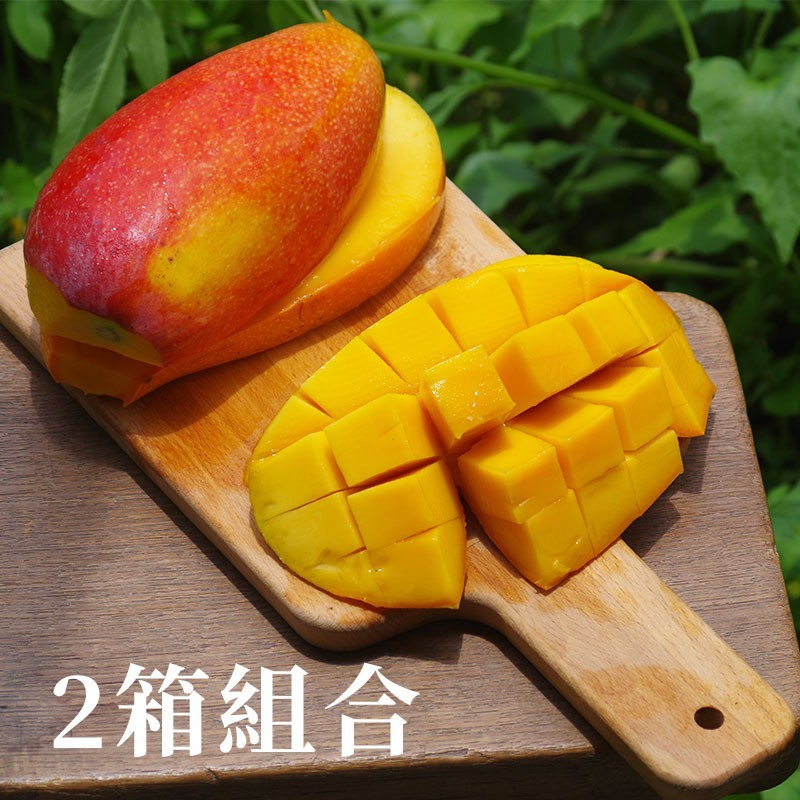 【好吃擋~不住】農民黨芒果(5台斤裝)-兩箱免運組