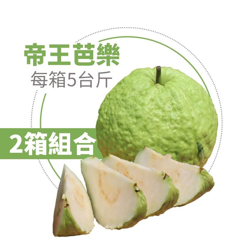 【水薄荷芭樂】帝王芭樂(5台斤)-兩箱免運組