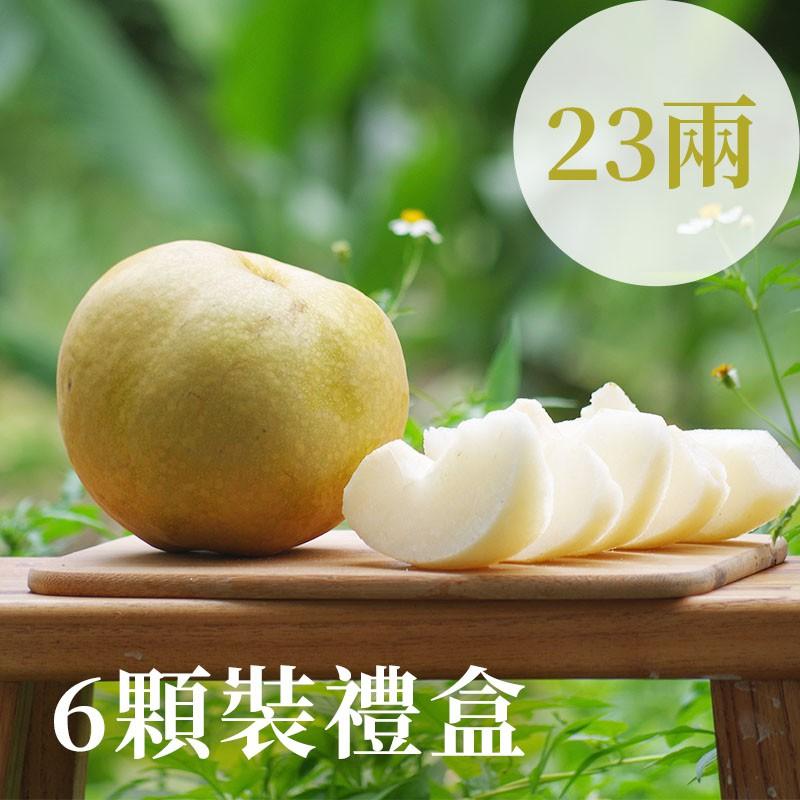 【豐碩之梨】寶島甘露梨(23兩)-6顆裝禮盒
