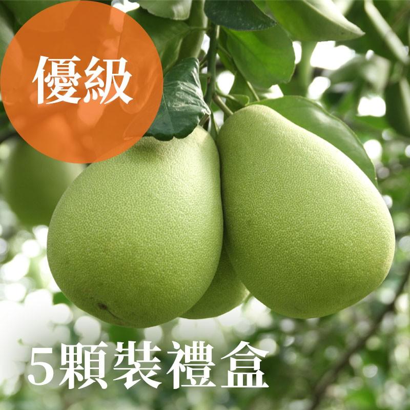 【雲夢之柚】雲林斗六文旦(優級)-5顆裝禮盒