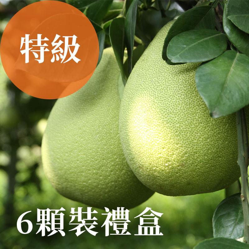 【雲夢之柚】 雲林斗六文旦(特級)-6顆裝禮盒