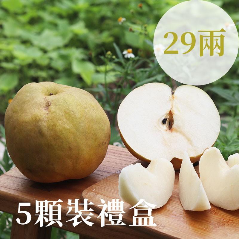 【豐碩之梨】寶島甘露梨(29兩)-5顆裝禮盒