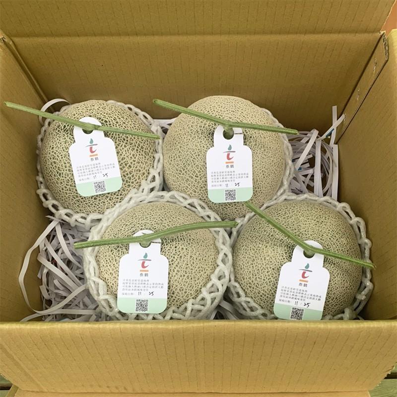 【豐圓哈密瓜】阿露絲/愛櫻網紋洋香瓜(4顆箱裝)