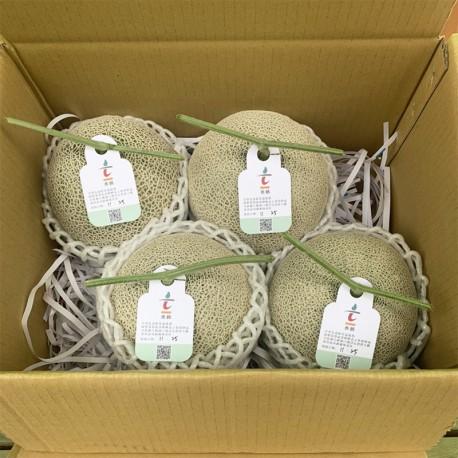 豐圓哈密瓜:阿露絲、愛櫻網紋洋香瓜(4顆禮盒裝)