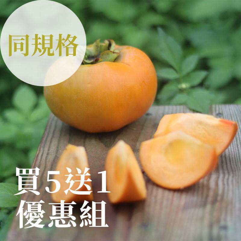 【秋紅柿務所】花御所甜柿(同規格)-買5送1優惠組合