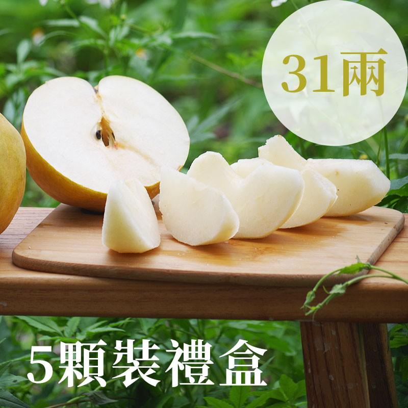 【豐碩之梨】寶島甘露梨(31兩)-5顆裝禮盒