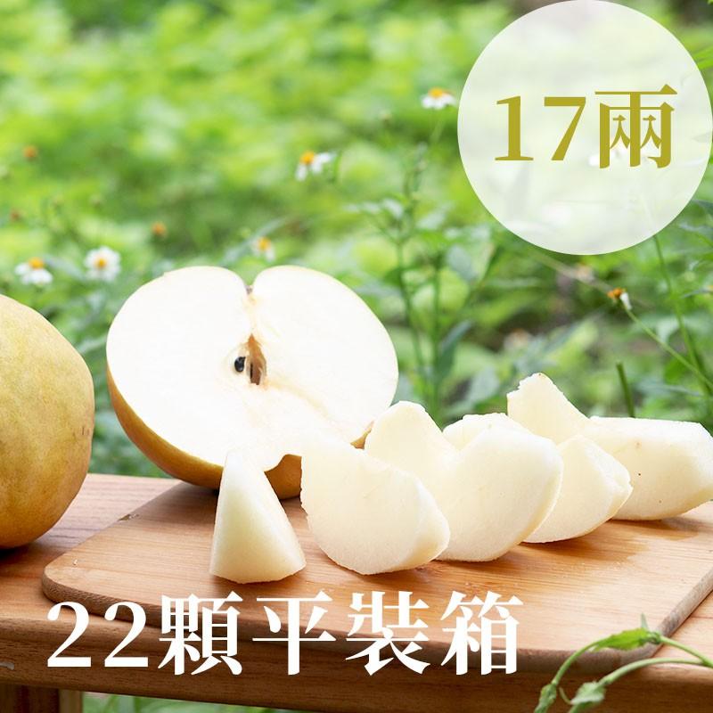 【豐碩之梨】寶島甘露梨(17兩)-22顆平裝箱