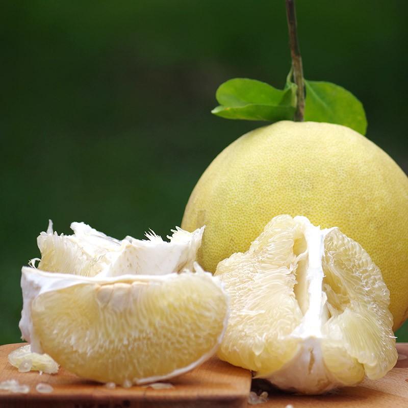 【柚見好秋】台南麻豆大白柚(10台斤裝)