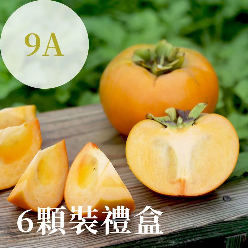 【秋紅柿務所】富有甜柿(9A)-6顆裝禮盒