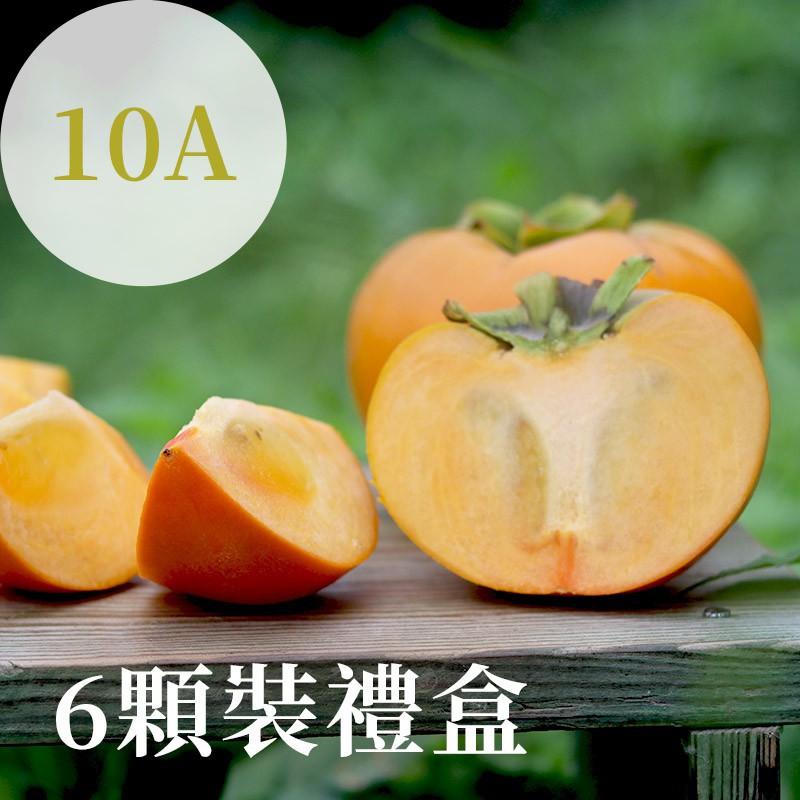 【秋紅柿務所】富有甜柿(10A)-6顆裝禮盒