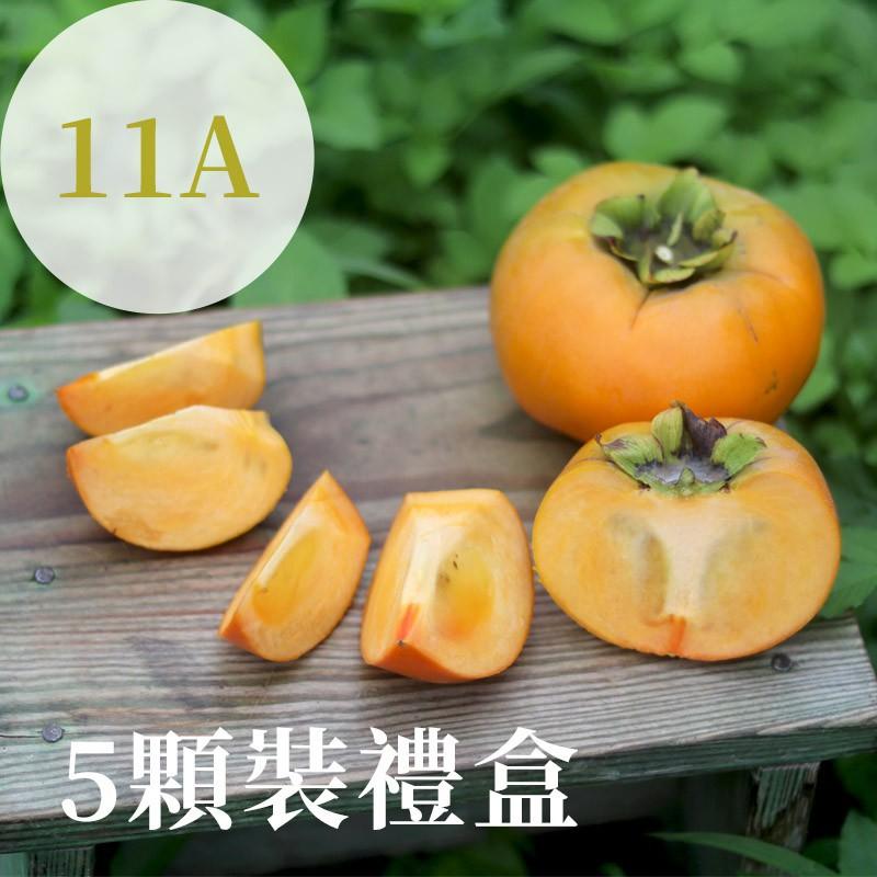【秋紅柿務所】富有甜柿(11A)-5顆裝禮盒