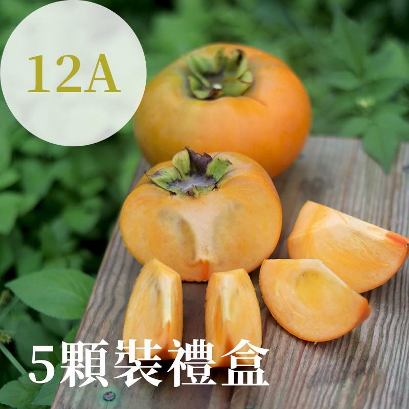 【秋紅柿務所】富有甜柿(12A)-5顆裝禮盒