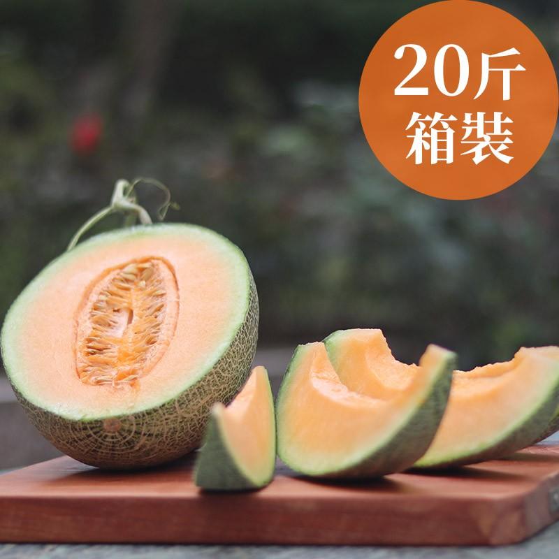 【驚奇之瓜】嘉義極光哈密瓜(20斤箱裝)