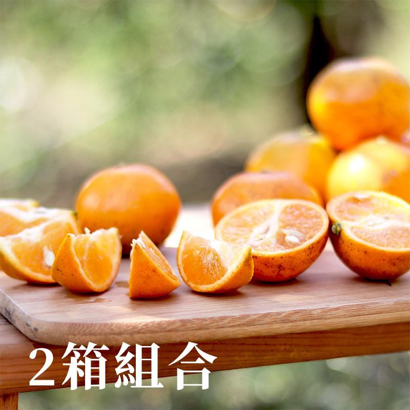 【福珠】新竹寶山弗利檬柑(5台斤)-兩箱免運組