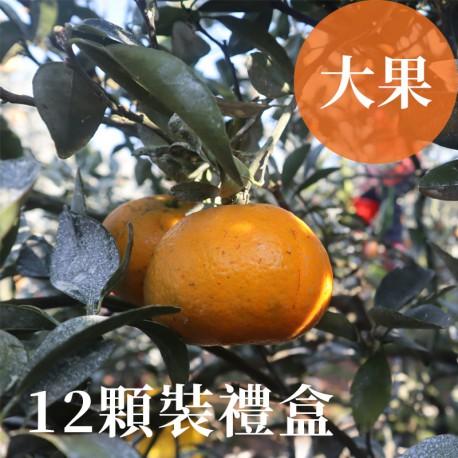 吉利茂谷柑:雲林斗六茂谷柑(大果12顆禮盒裝)
