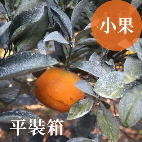 吉利茂谷柑:雲林斗六茂谷柑(小果10台斤平裝箱)