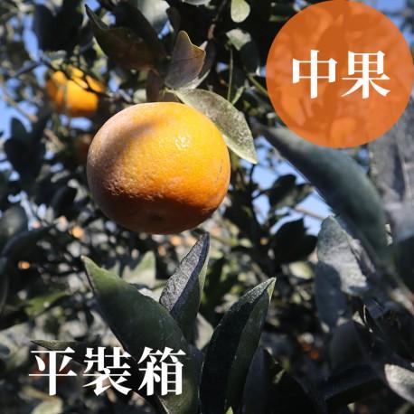 吉利茂谷柑:雲林斗六茂谷柑(中果10台斤平裝箱)