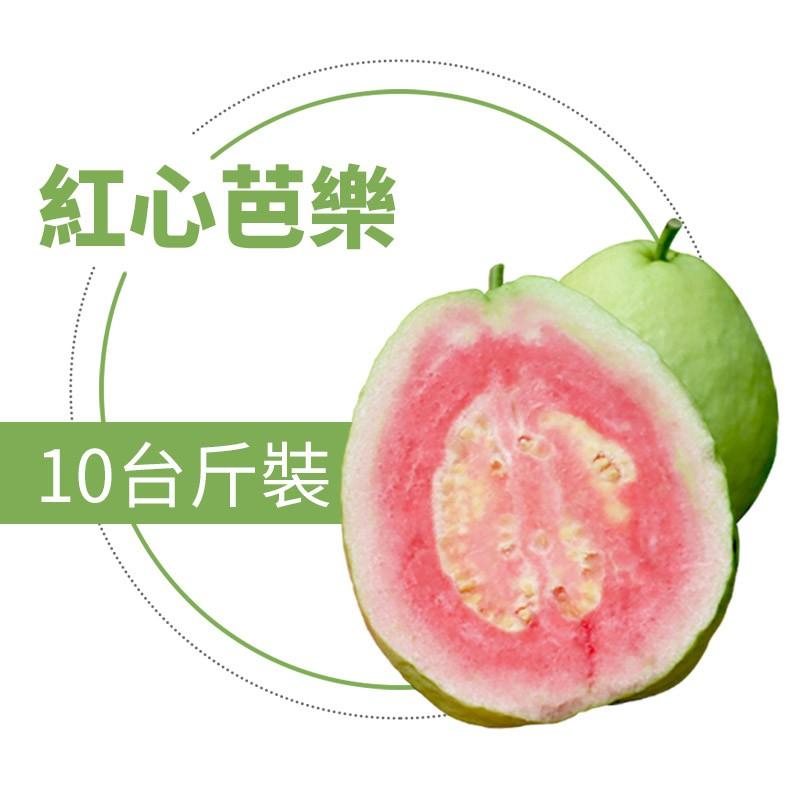 【水薄荷芭樂】紅心芭樂(10台斤)