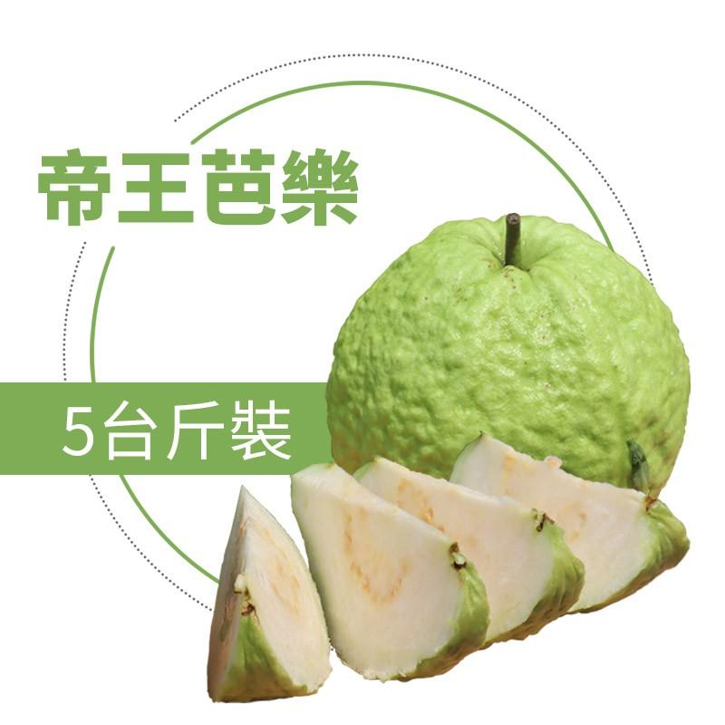 【水薄荷芭樂】帝王芭樂(5台斤)