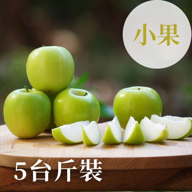 屏東高樹蜜棗,冬季產季新鮮直送!