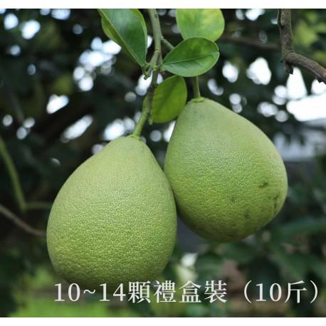 【台南麻豆】頂級老欉文旦禮盒(10斤)