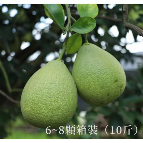【台南麻豆】頂級老欉紅文旦箱裝(10斤)