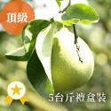 雲林斗六-友善耕作文旦柚