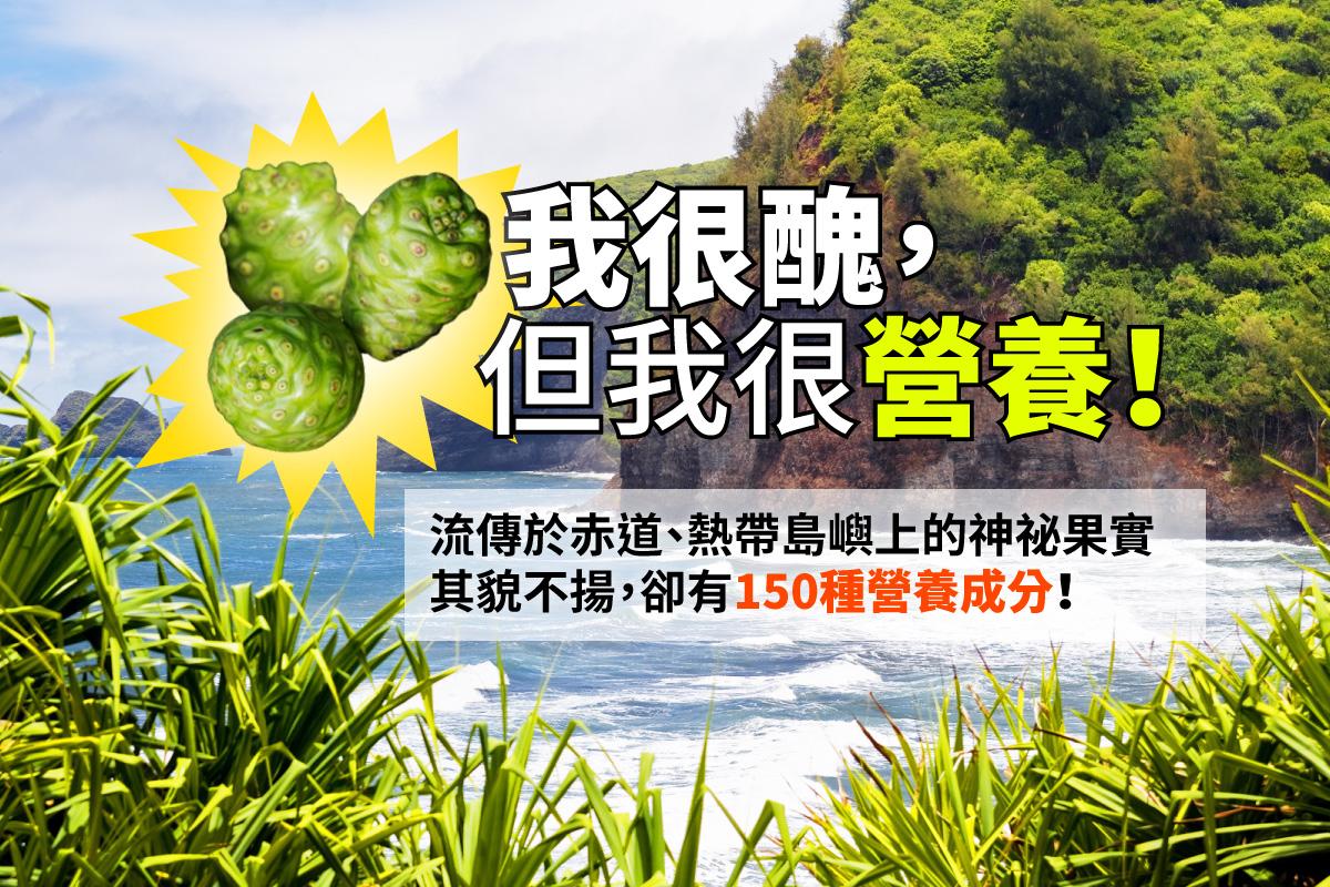 流傳於赤道 熱帶島嶼的神祕水果 諾麗果 150種營養成分
