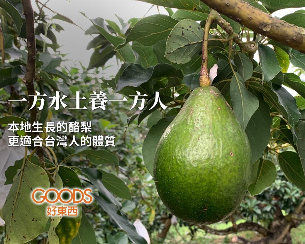 一方水土養一方人,本地生長的酪梨一定比進口的酪梨更適合台灣人的體質。
