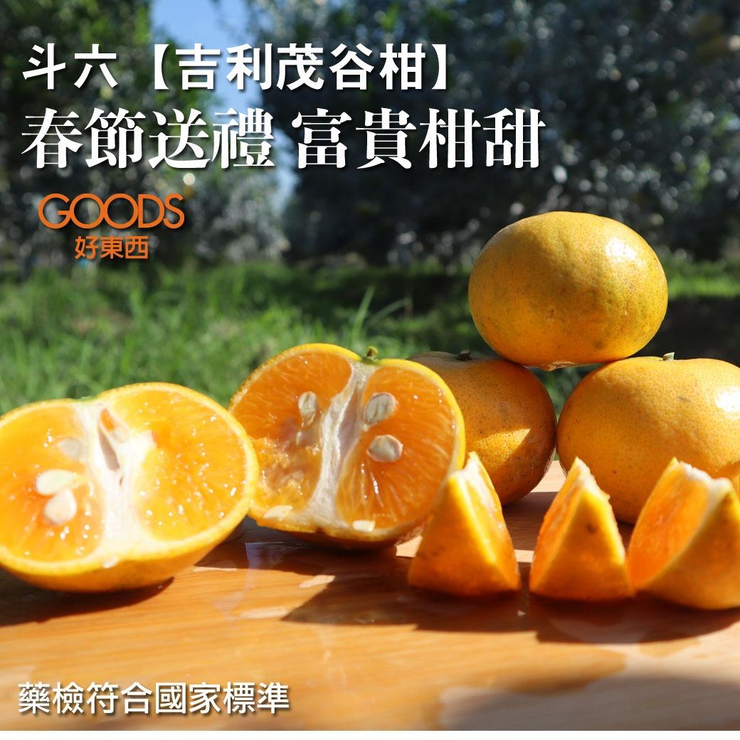 吉利茂谷柑