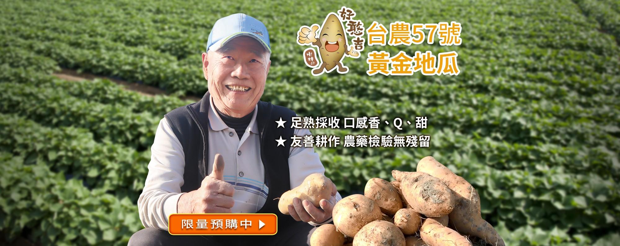 雲林水林『好憨吉』台農57號黃金地瓜