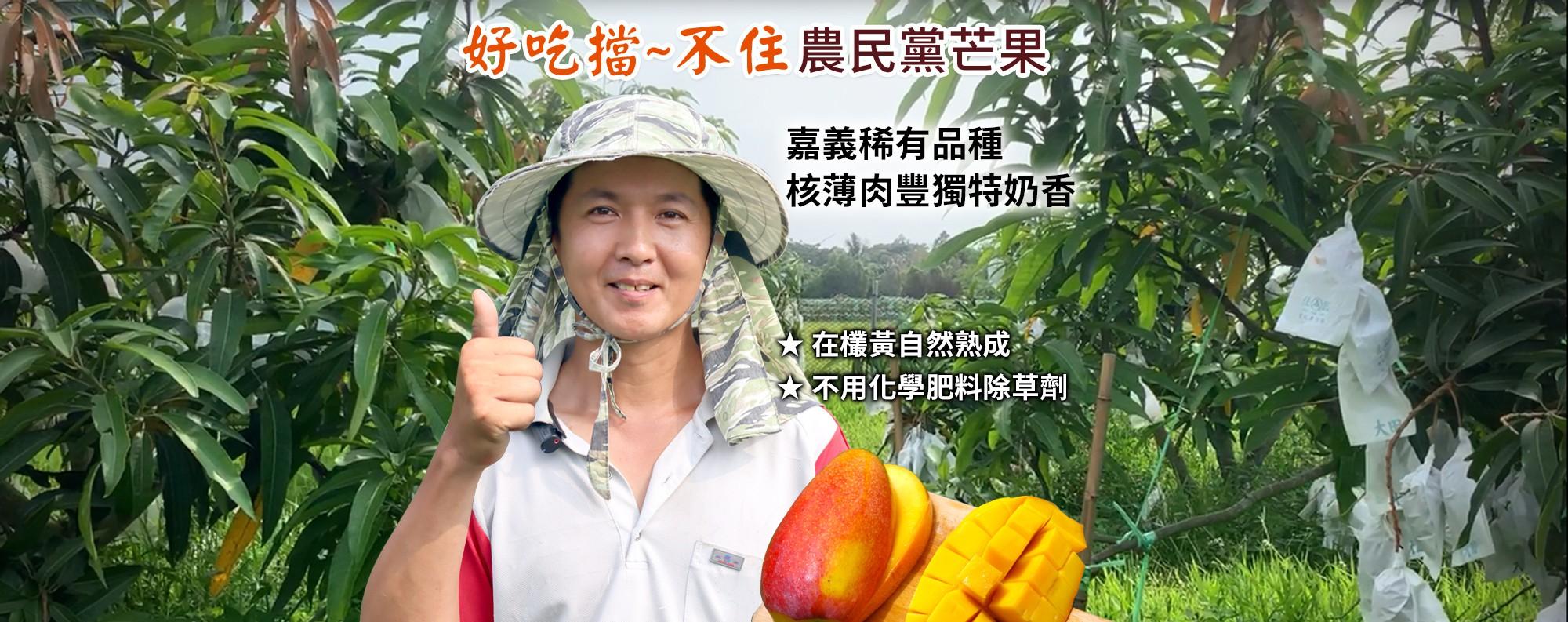 【好吃擋~不住】農民黨芒果